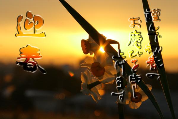 2011_01_01